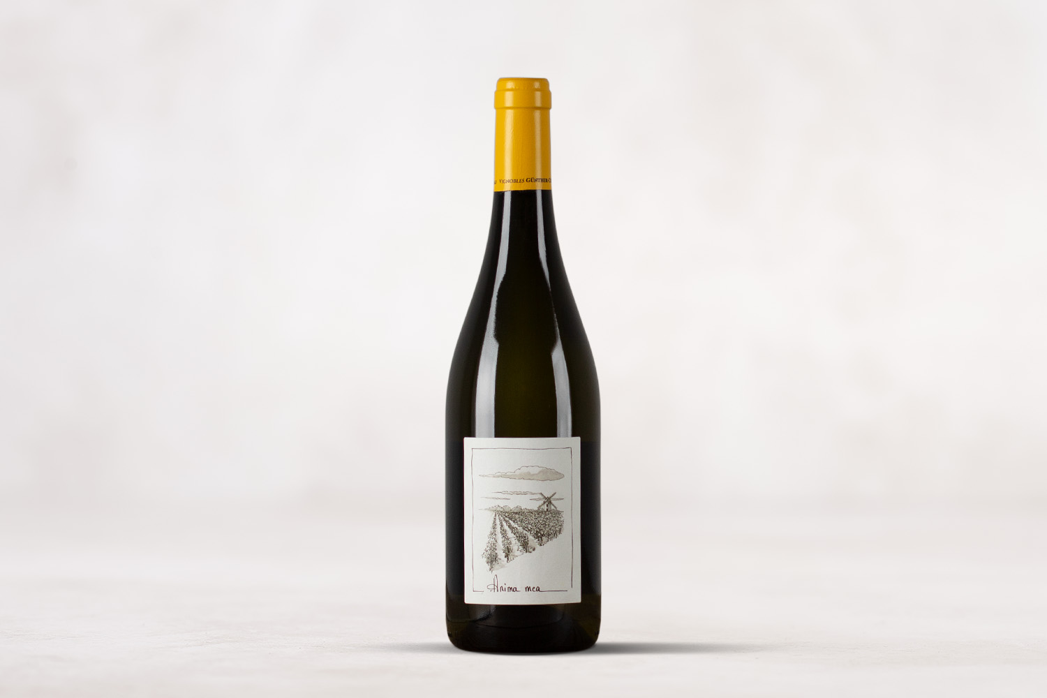 "Véronique Günther- Chéreau, Muscadet Sèvre et Maine sur Lie ""Anima Mea"" Loire Valley, France 2018 - SommSelect"