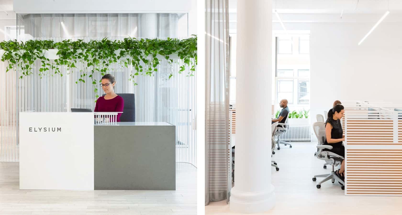 Elysium Office 2