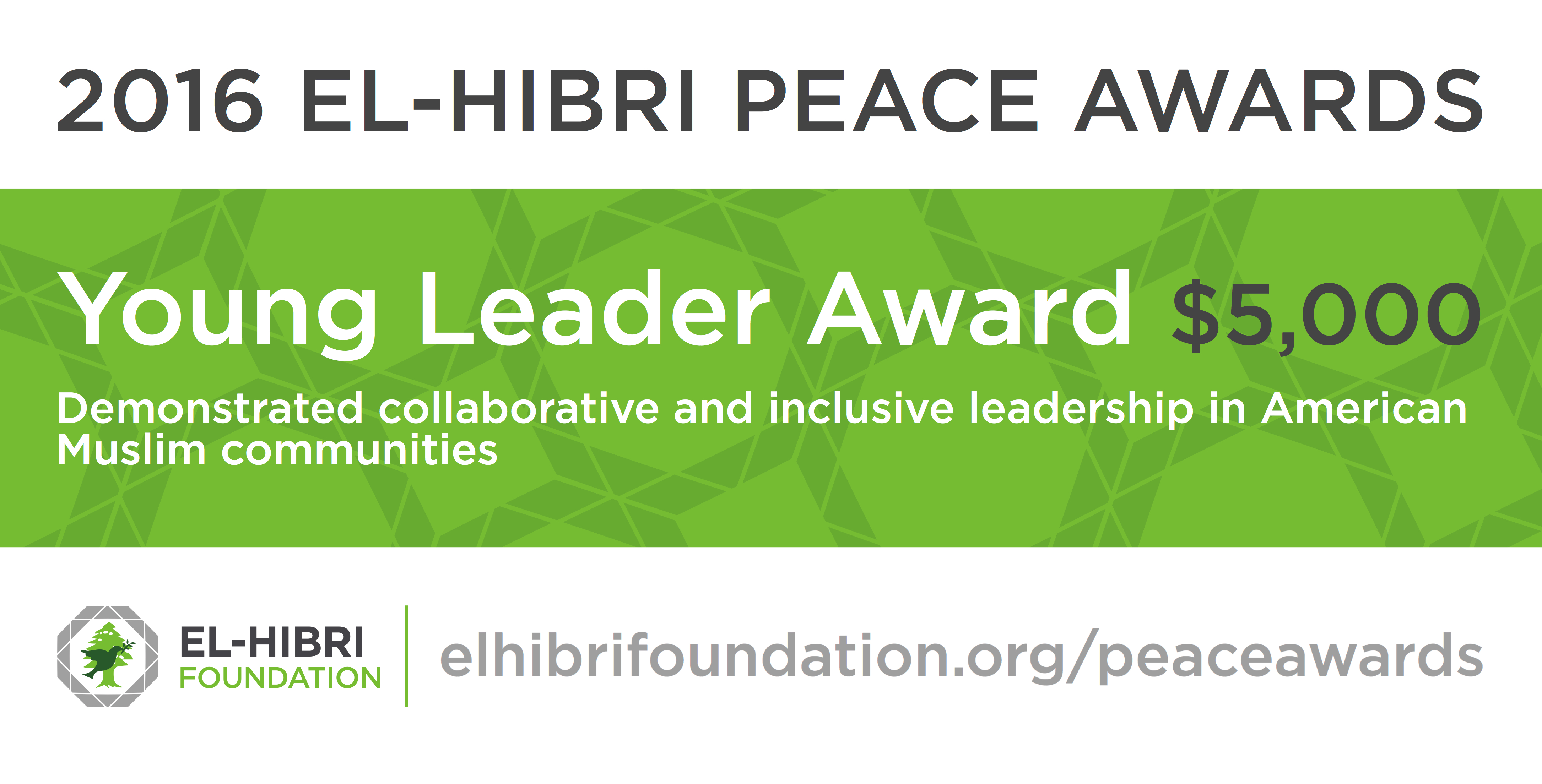 EHF - 2016 Young Leader Award Banner - Tw - 6-28-16
