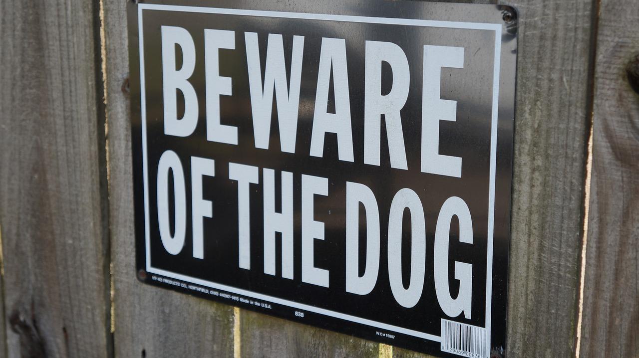 dog bites lawyer