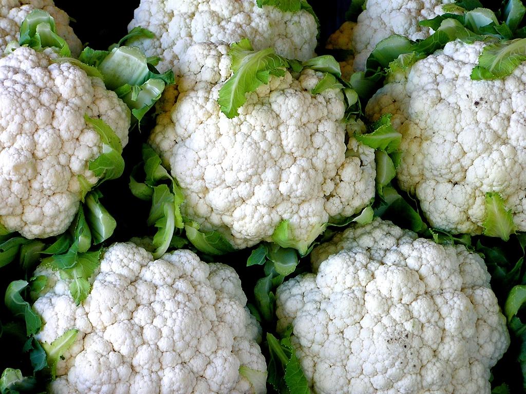 Harvested White Cauliflower Heads