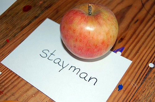 "Malus domestica ""Stayman"""