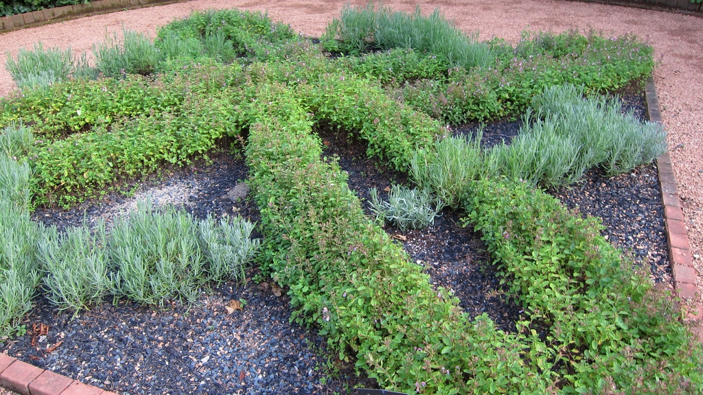 Used in a knot garden