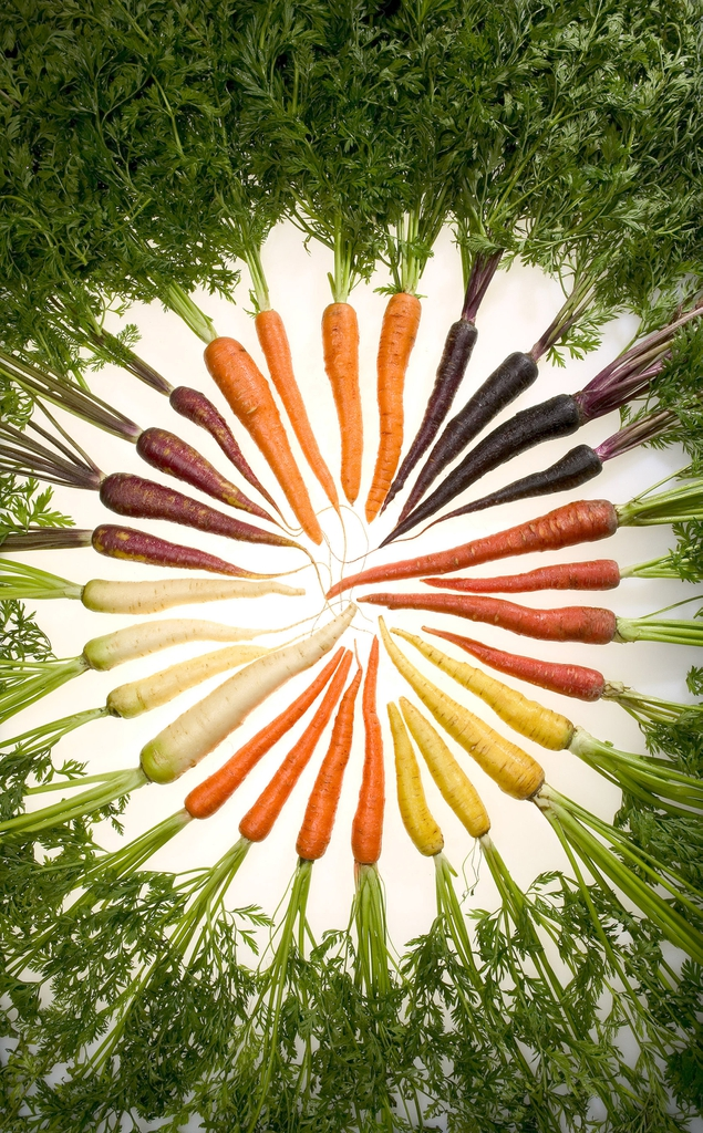 carrots that are purple, yellow, white, and orange