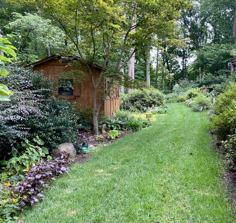 Border with potting shed