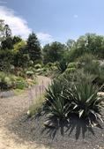 Photograph A: Souto Sun Garden