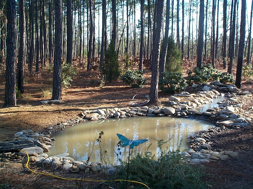 Rocks are placed to edge the pond