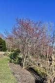 Souto Sun Garden