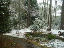 Snow captures wonderful textures