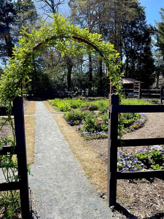 Arched garden entrance