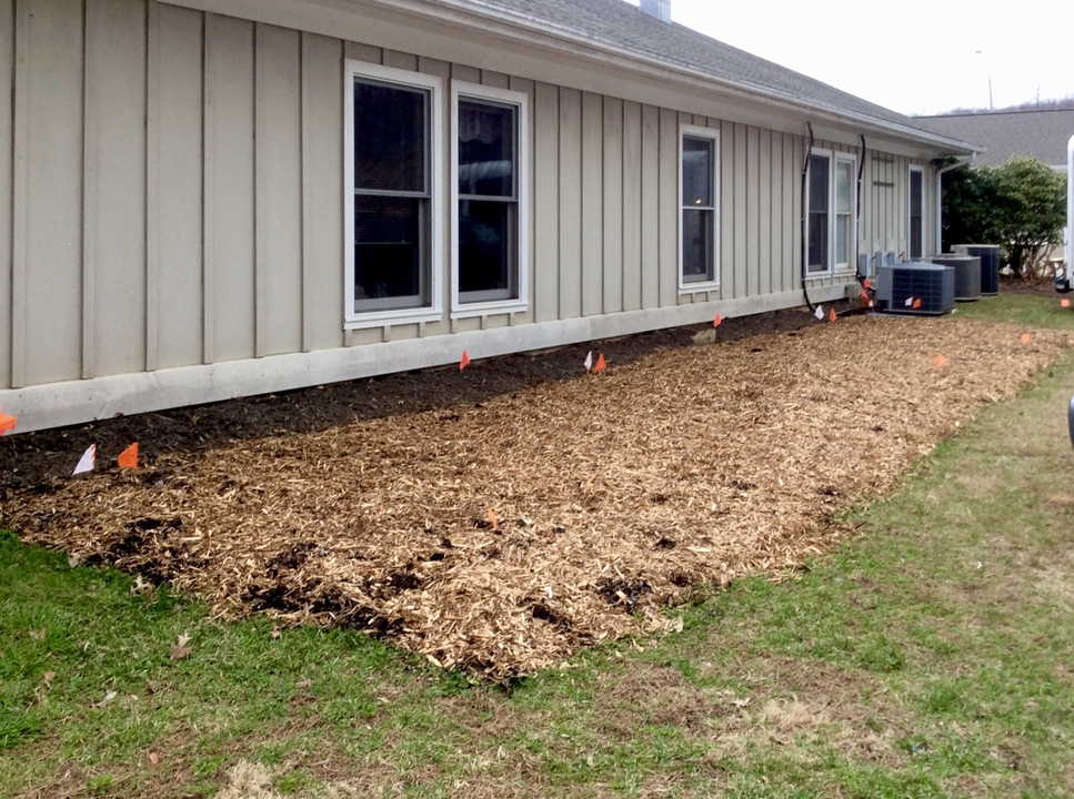 Before Photo: Garden bed prepared and mulched