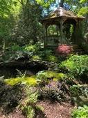 Front Shade Garden
