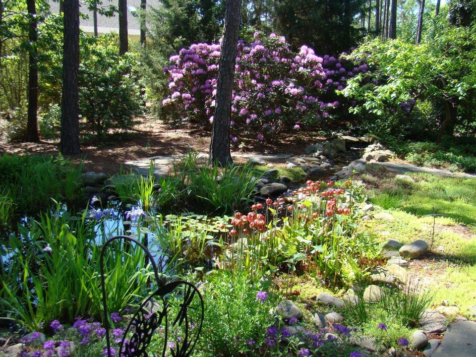 Lush foliage and flowers invite birds and butterflies