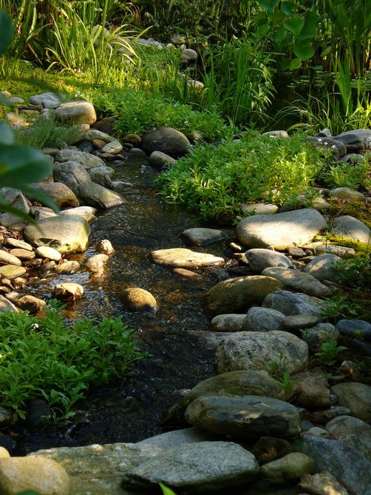 Stream view looking toward pond