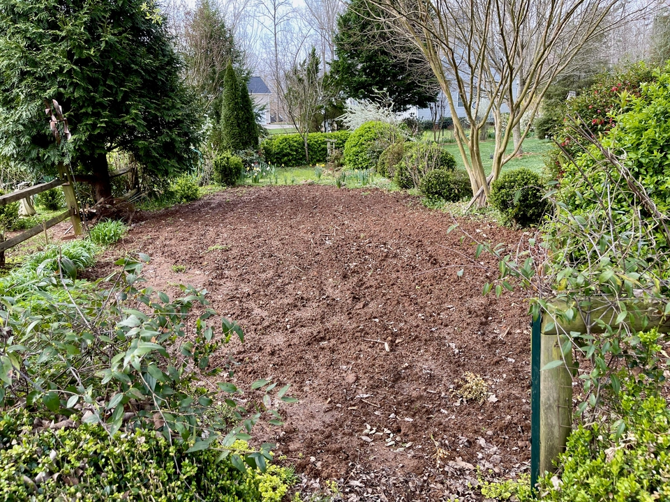Late winter, garden waiting to be planted