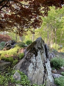 Rock & water garden