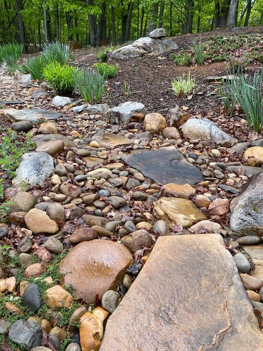 Rock Dry Stream Garden