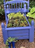 A garden bed
