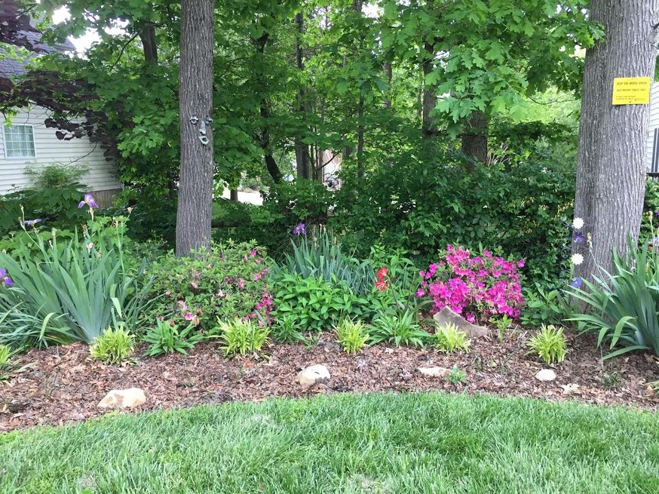 Backyard Respite Landscape in the Spring