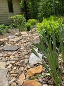 Dry Rock stream garden