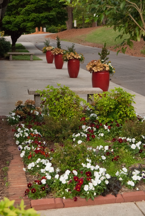 Multiple containers complement a ground garden.