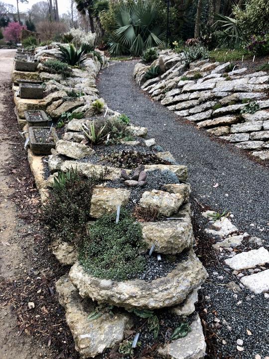 Photograph C: Crevice Garden