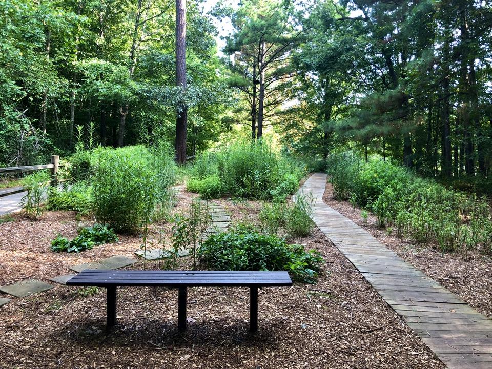 Crowder Park Prairie and Native Plants Garden in the Summer