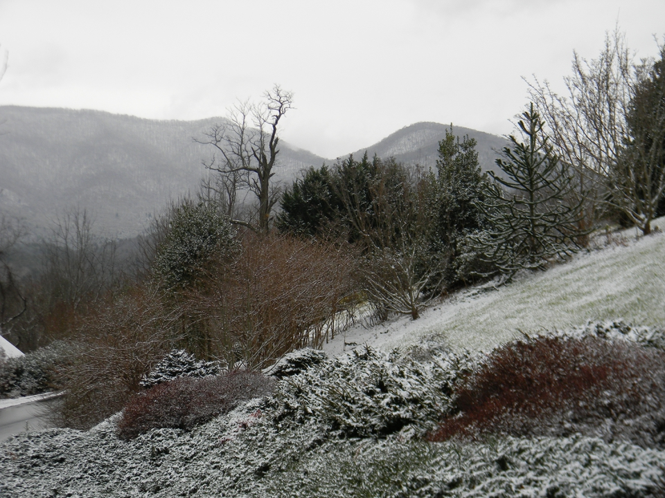Snow Covered East section