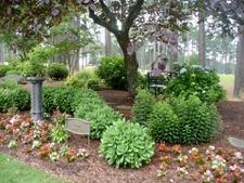 Nice garden structure