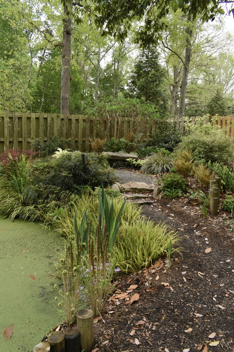 Front Shade Garden in spring