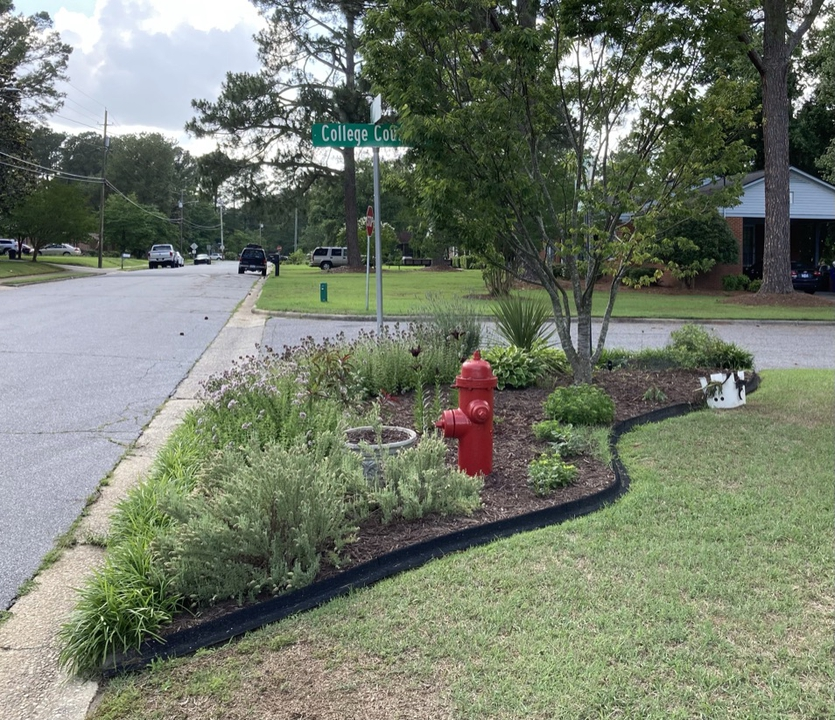 Fire Hydrant Garden in the Summer