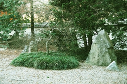 The island in the Japanese Garden.