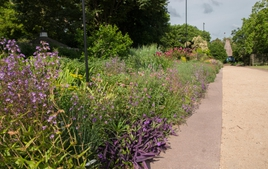 the JCRA perennial border in bloom during the summer