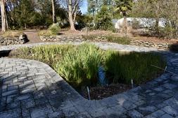 Photograph H: Sunken Pond Garden in winter