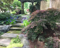 a planting of shade tolerant species near a patio, and walkway