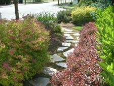 Paver Pathway Garden