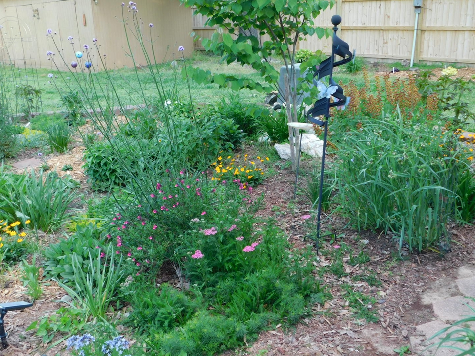 Early May Garden