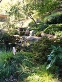 Sarah P Duke Gardens in the Fall
