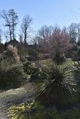 Photograph B: Souto Sun Garden in March
