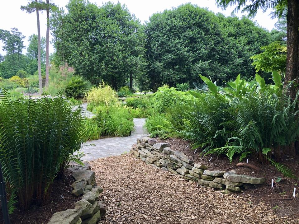Sunkon Pond Garden in the Summer