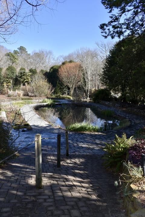 Photograph G: Sunken Garden Pond in February