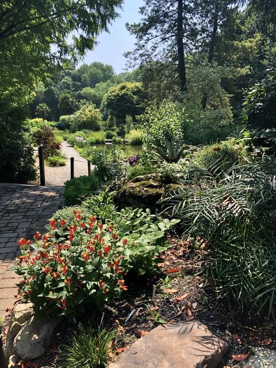 Sunken Pond Garden in Spring