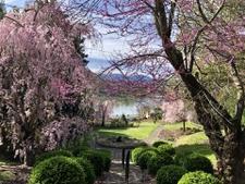 Susanna Wesley Garden, Lake Junaluska