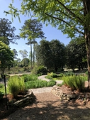 Photograph F: Sunken Gardenin mid-April