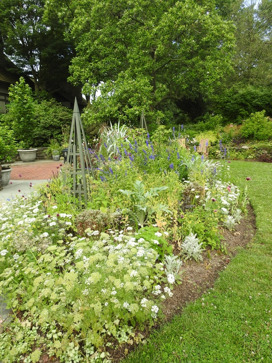 Perennial bed in mid-June.