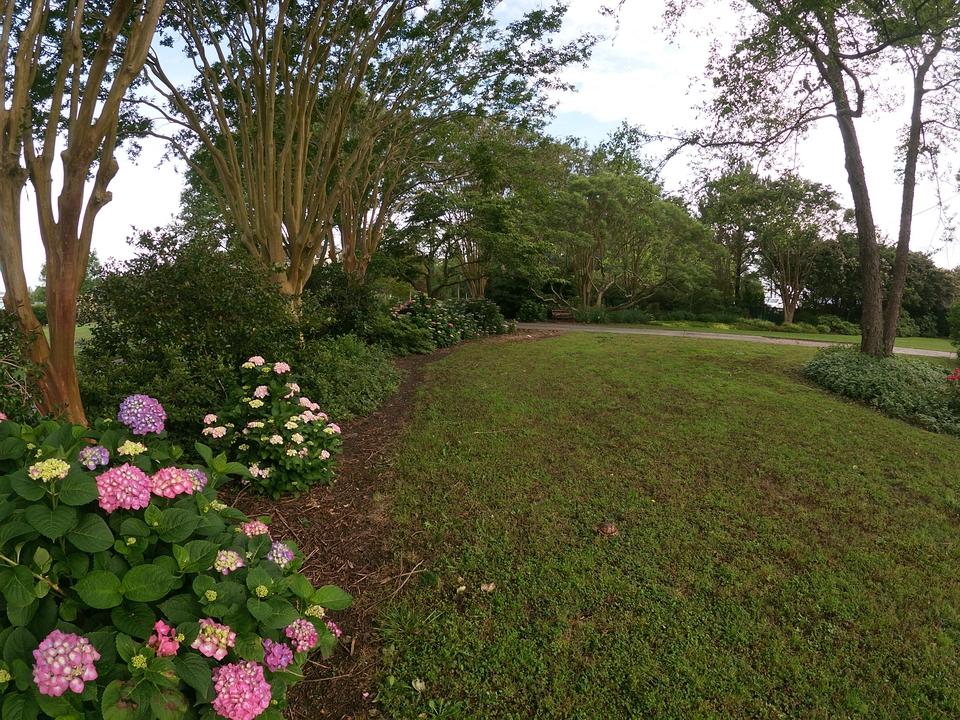Boarder Garden