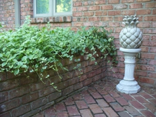 Courtyard Entrance Garden in Moore County in summer (planters)