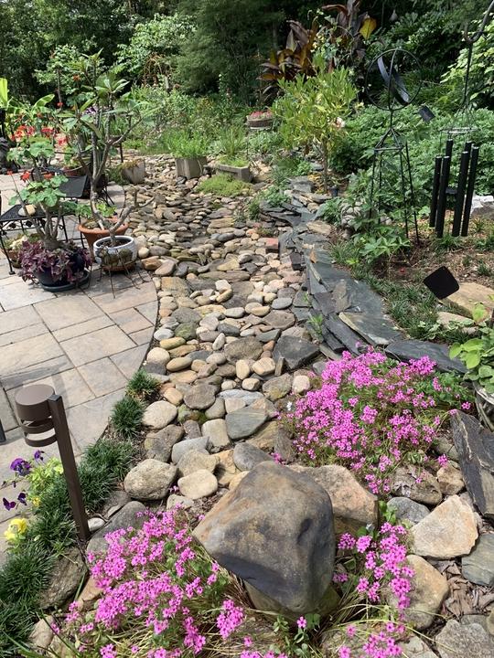 Dry stream bed