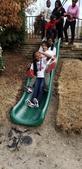 Slide in Garden