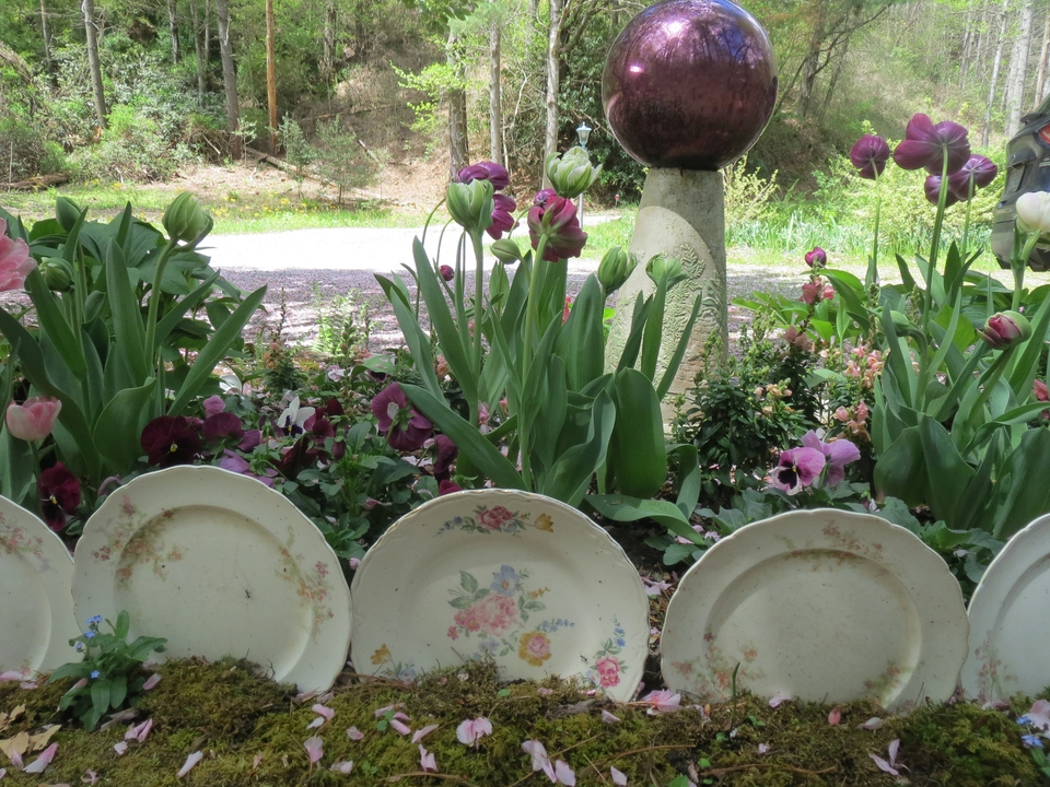 Tulips mirror the color of gazing ball while upcycled china plat